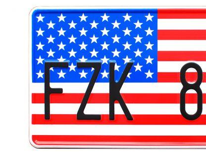 tablice-rejestracyjne-300x150-USA-2-3