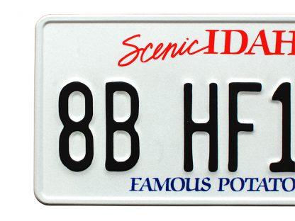 tablice-rejestracyjne-300x150-USA-5-3