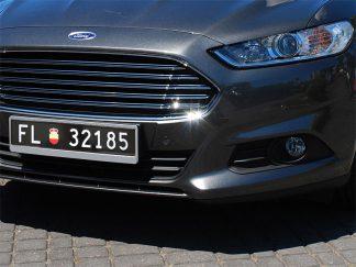 tablice-rejestracyjne-520x110-Liechtenstein-1