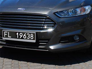 tablice-rejestracyjne-520x110-Liechtenstein-2-1